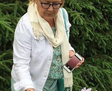 Un iris à l'honneur de Pauline Marois