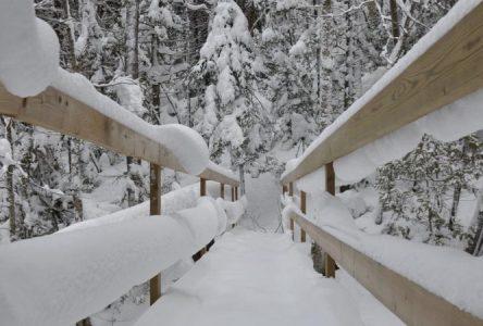 Le Parc régional du Massif du Sud obtient 526 300$ pour un pavillon multifonctionnel