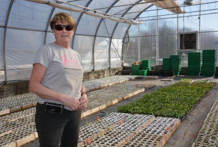 L'inquiétude persiste chez Fruits & Légumes RG: où va-t-on trouver des bras pour la récolte?
