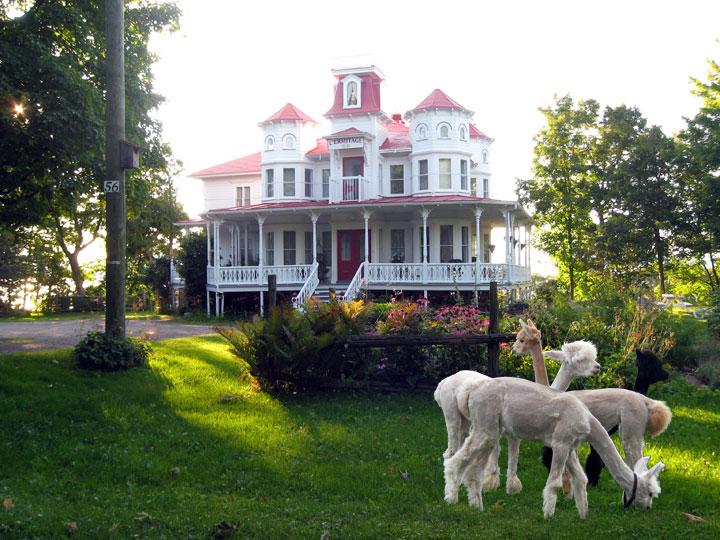 Question de survie: le gîte La Maison de l'Ermitage ouvre ses portes aujourd'hui