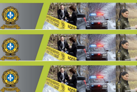 Bulletin d'informations policières