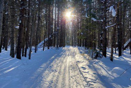 Un retour sur la Fête Arctique de Saint-Pamphile