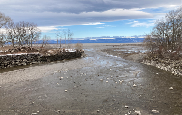 Projet d'étude sur l'éperlan arc-en-ciel de la rivière Trois-Saumons