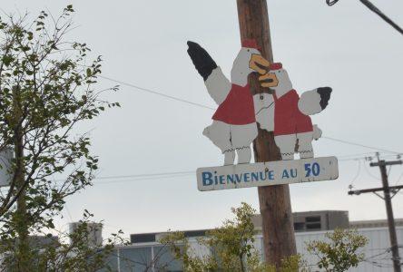 Le Festival de l'Oie Blanche fête ses 50 ans